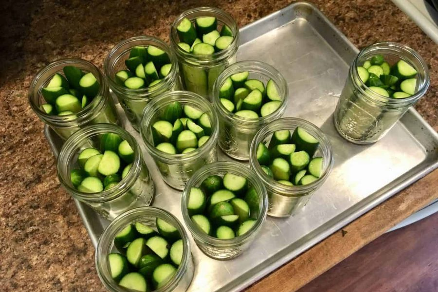Preserving Pickles